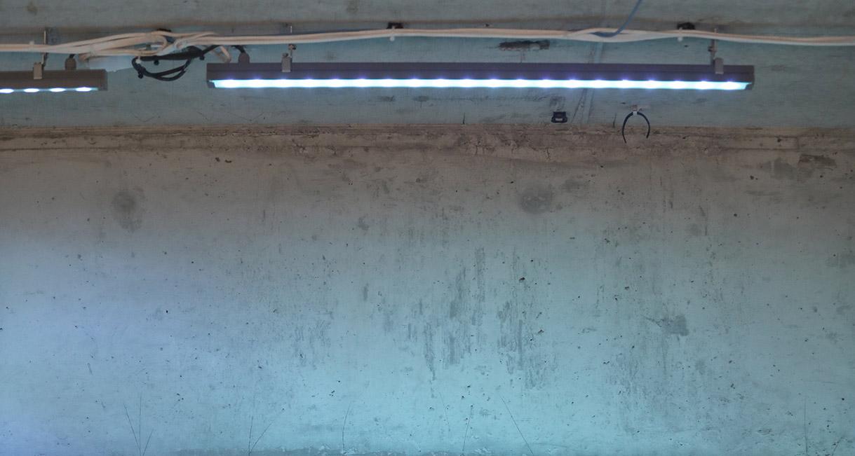 Industralight-LED-Lighting-Macquarie-Universiy-0X7A0316R